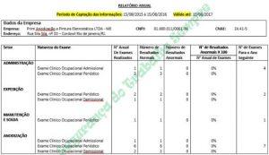 Modelo de Relatório Anual do PCMSO